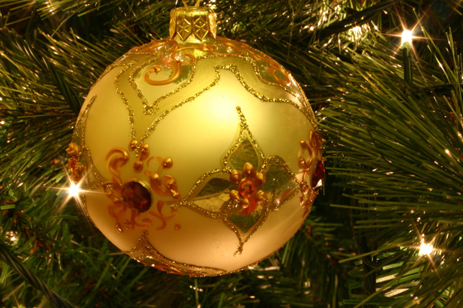 Christmas Tree Care Recommendations