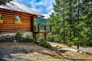 Tree Care, Certified Arborist, Preventative Tree Care, Tree Pruning