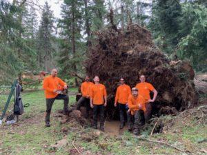 Corvallis Tree Care