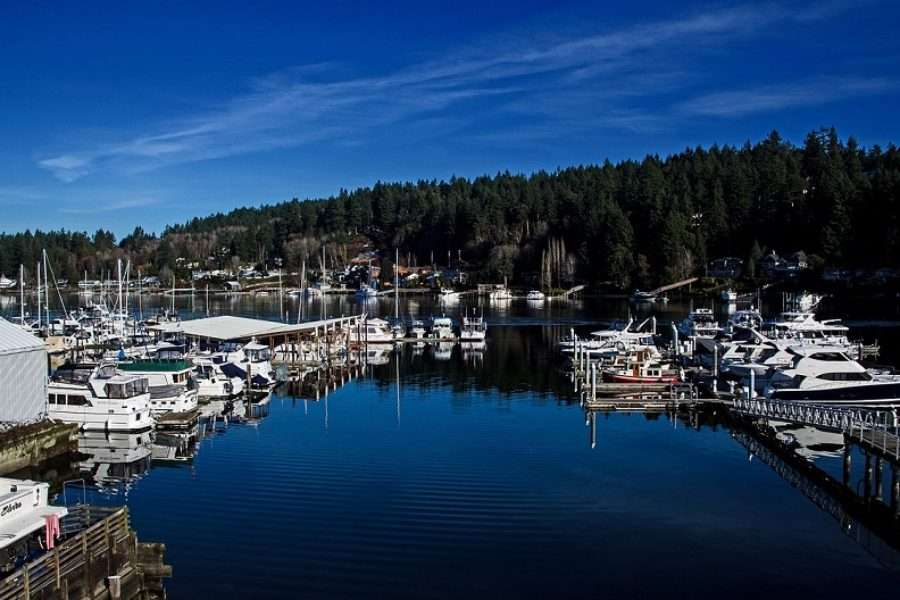 Why Trees So Important to Gig Harbor, Washington